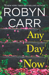 Any Day Now (Sullivan's Crossing, #2) by Robyn Carr