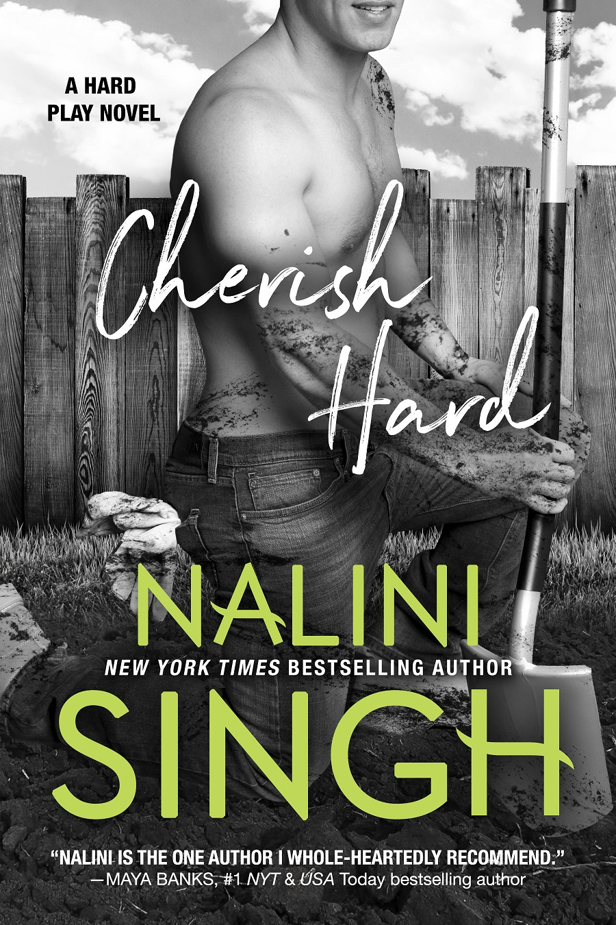 Cherish Hard (Hard Play, #1) by Nalini Singh